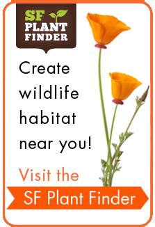 sfe_bd_button_sidebar_plantfinder_rollover.png