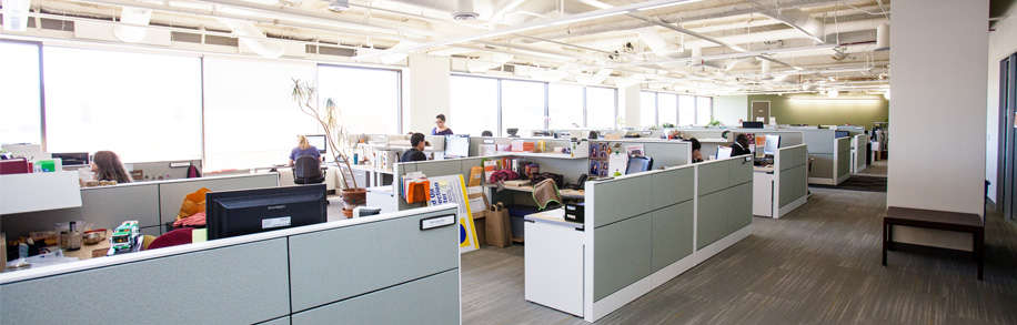 sf environment awarded leed platinum commercial interior