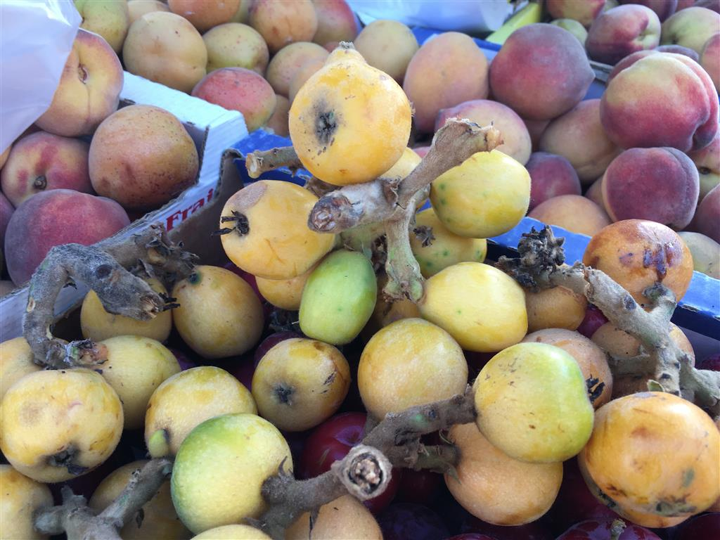 Seasonal Fruit: Loquats (available in San Francisco farmers markets)