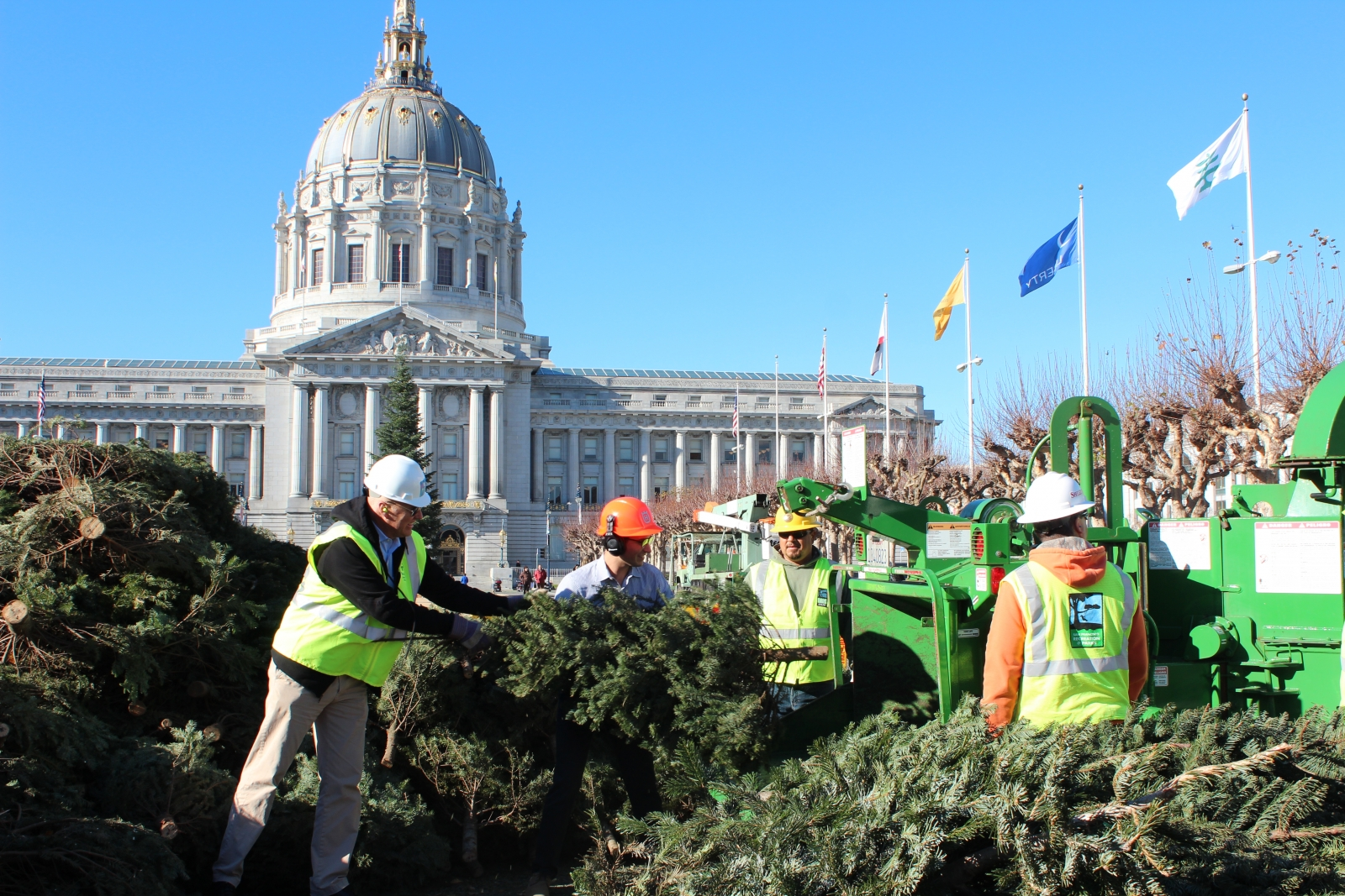 30th Annual Tree Chipping Event Continues San Francisco's