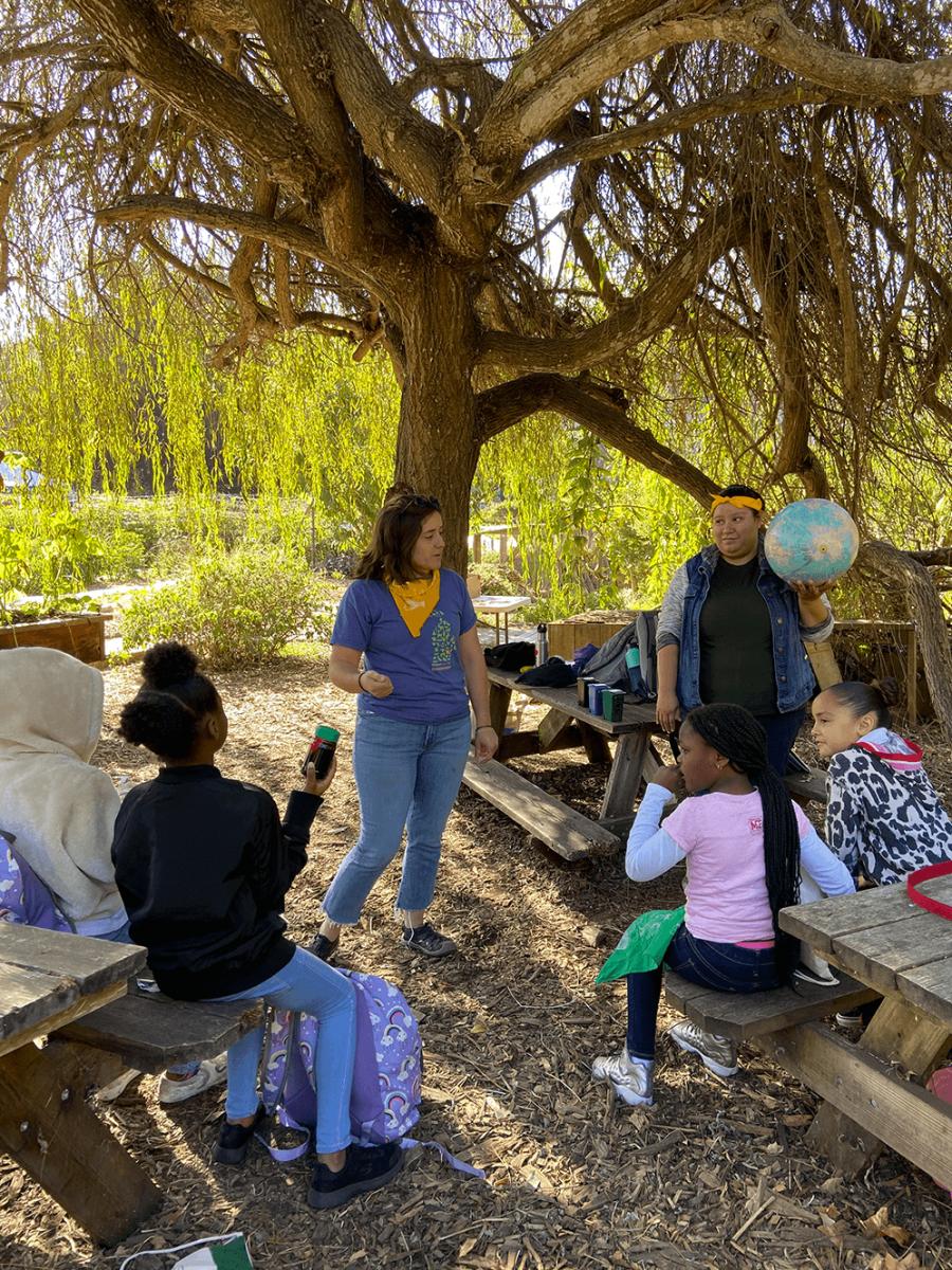 Students learning on an urba farm