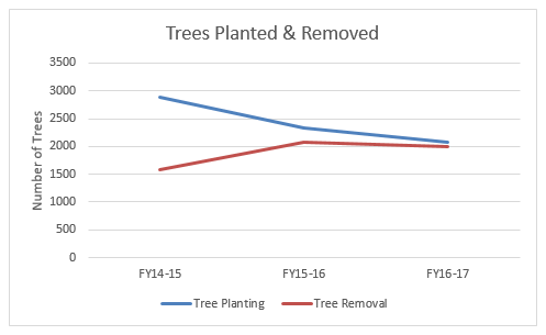 three year trends - planting and removals