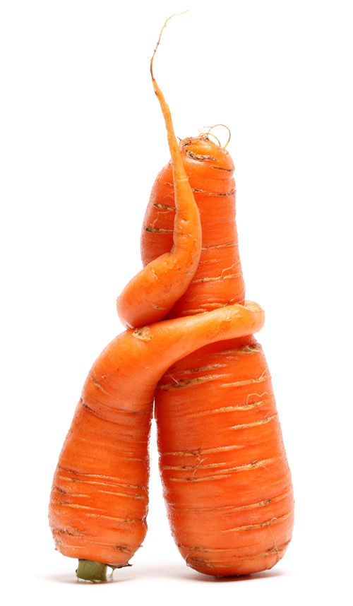 stock-photo-18214041-carrots.jpg