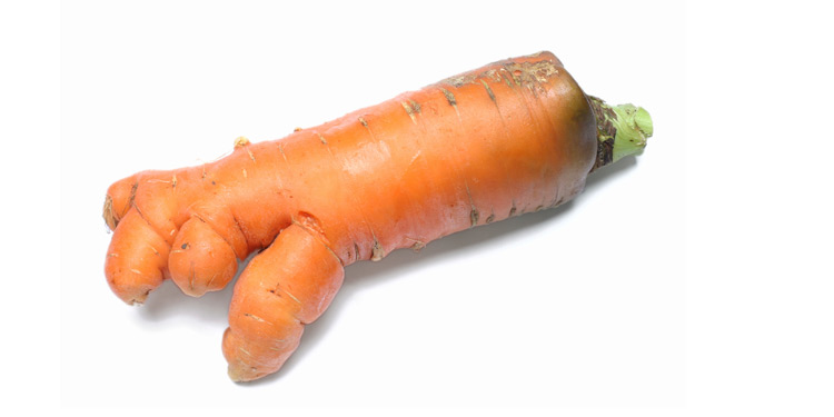 stock-photo-1266965-big-ugly-carrot.jpg