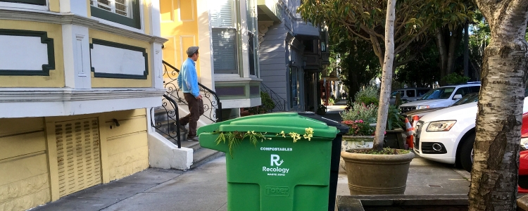 photo of compost bin on Noe Street in SF