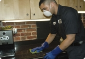 sfe th green cleaning thumb kitchen lg jpg